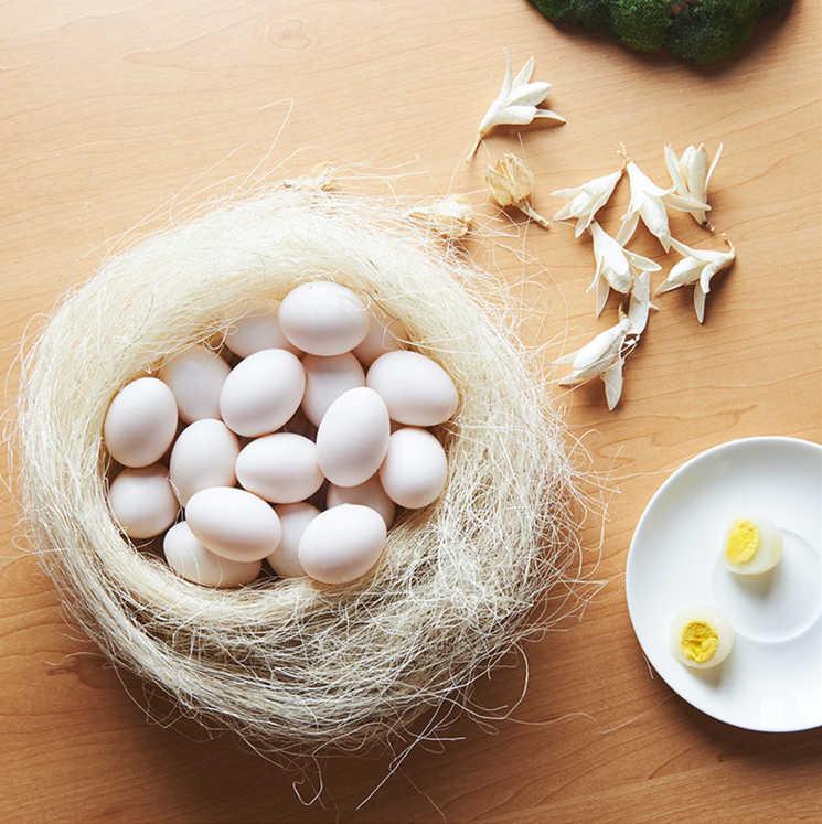 【磊鑫农业】邢家五谷杂粮喂养白羽王鸽及新鲜鸽子蛋常年接受预订