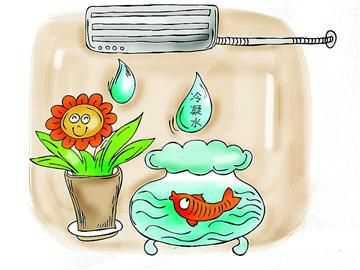 空调水可以作什么?喝?浇花?养鱼?  空调 冷凝水 空调水 浇花 养鱼 第1张