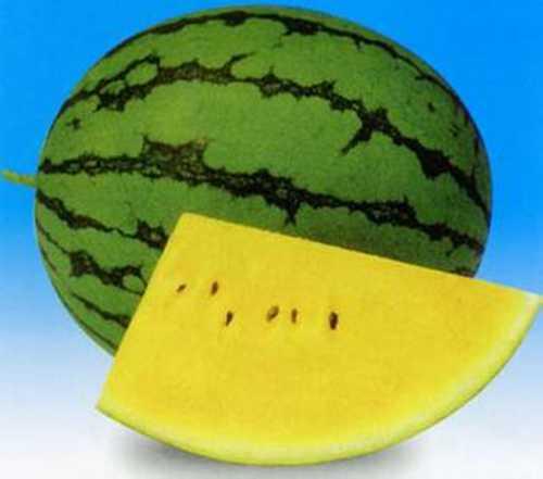 你可能不知道的几个比较有趣的西瓜品种  西瓜 三白西瓜 心形西瓜 方形西瓜 黄皮西瓜 黄瓤西瓜 第3张