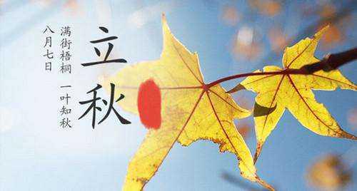 有关立秋的谚语